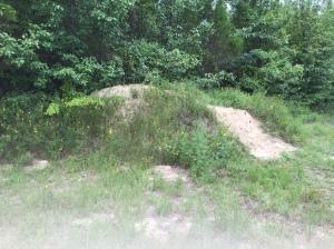dirt pile before