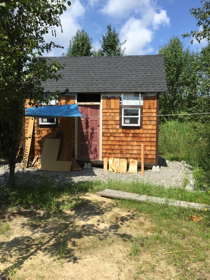 tiny-cabin-9-9-16