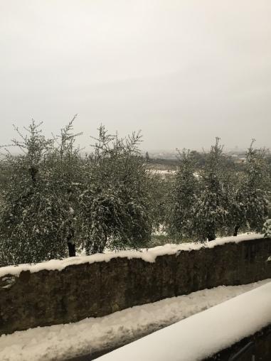 Tuscan snow